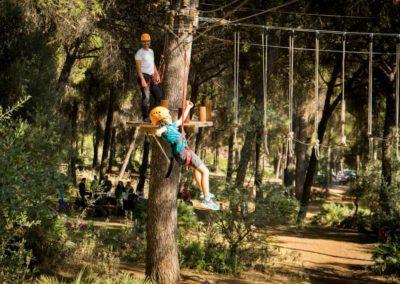 parques-en-árboles-IMN_3