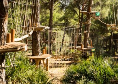 parques-en-árboles-IMN_4