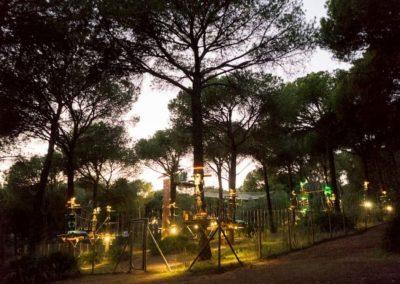 parques-en-árboles-IMN_6